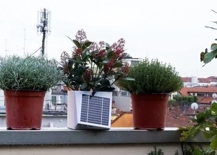 Il vaso che unisce i cittadini nella lotta all'inquinamento: si chiama Arianna